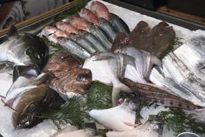 料理長自ら仕入れてくる新鮮な魚介類